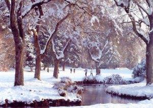 lg_snowfall