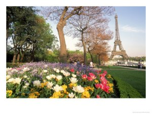 William Holdman Eiffel tower with spring flowers